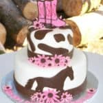 Pink Horse Cowgirl Cake Outside