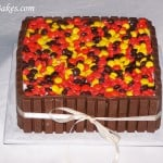 Fall Dress-Up Cake