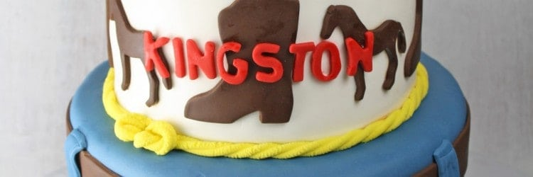 Cowboy Western Horse Cake with Red Hat 2
