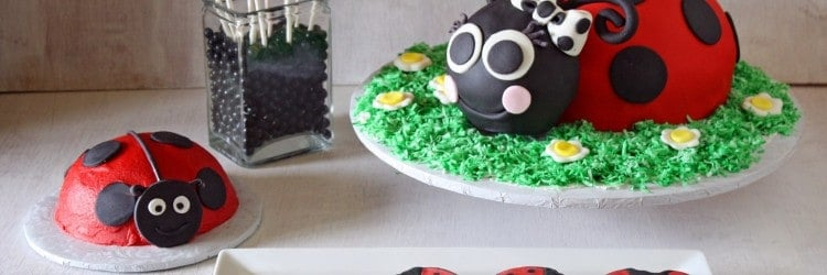 Ladybug Party Cake Cookies Pops Smash