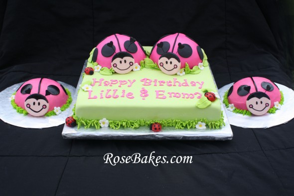 Cake Ideas For 1st Birthday Twins : Oh So Sweet Ladybug Birthday & Smash Cakes for Twins