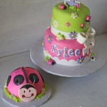 Oh So Sweet Pink Ladybug Cake and Smash Cake