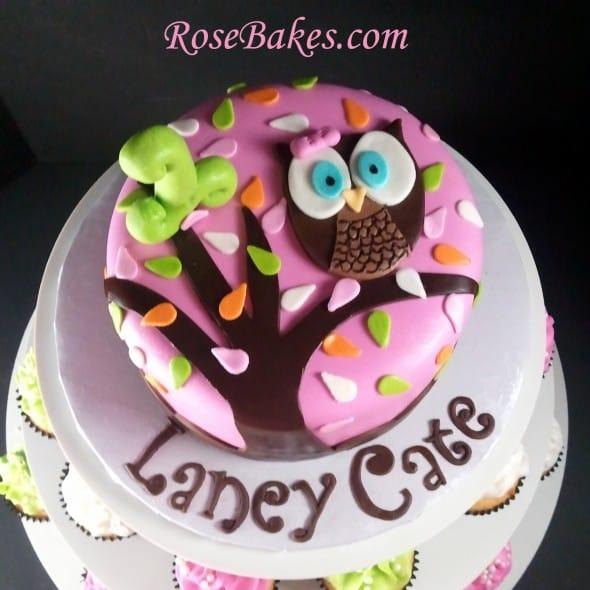 Look Whoo's 1 Owl Birthday Cake & Cupcake Tower