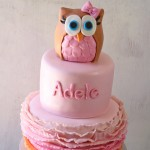 Sweet Owl Ombre Cake with Pink & Orange Ombre Ruffles