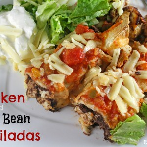 Black Bean & Chicken Enchiladas WM