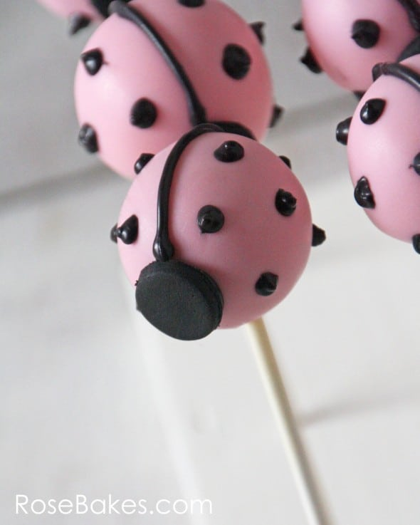 Single Ladybug Cake Pop WM