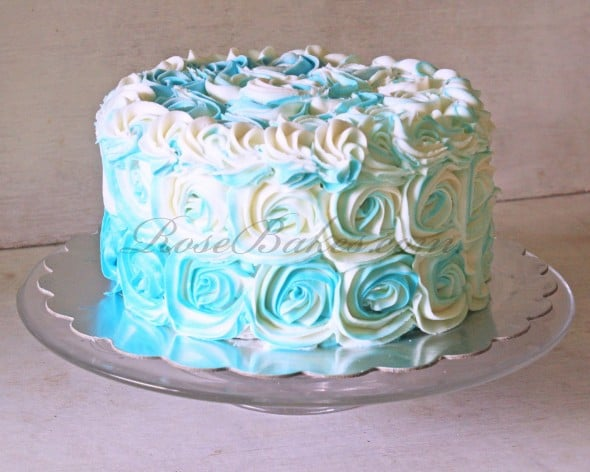 Teal and White Roses Cake