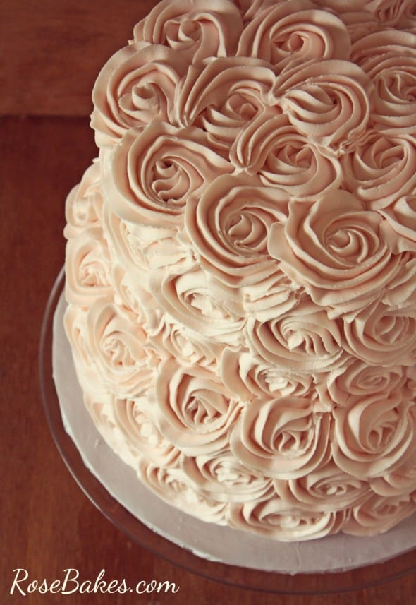 Blush Buttercream Roses