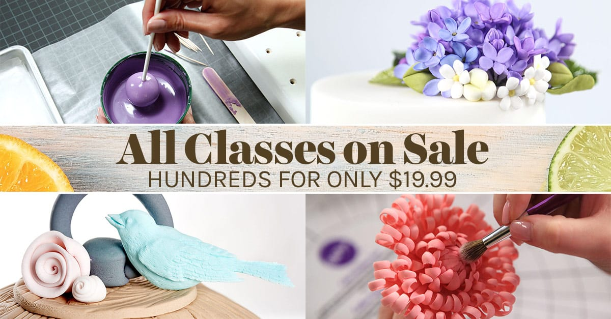 Cake Classes Sale