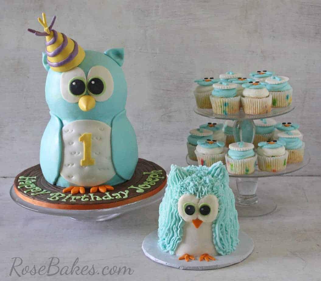 Owl Cake, Smash Cake and Cupcakes WM