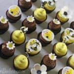 Bee cupcakes wm