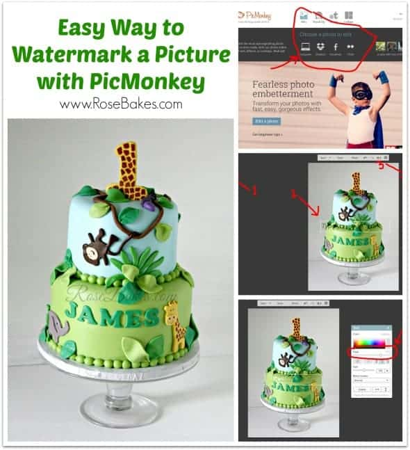 Easy Way to Watermark A Picture with PicMonkey