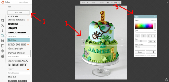 Easy Way to Watermark a Picture with PicMonkey 09