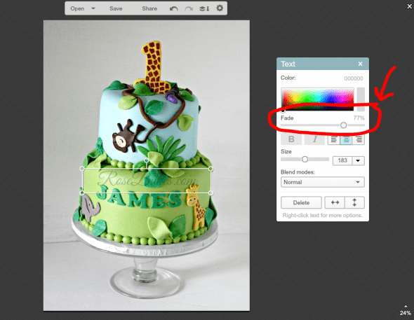 Easy Way to Watermark a Picture with PicMonkey 14