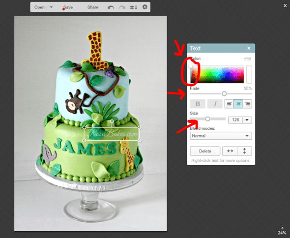 Easy Way to Watermark a Picture with PicMonkey 15