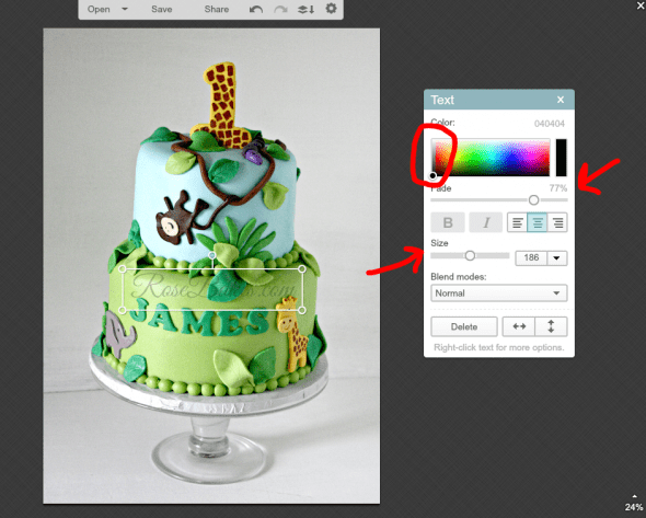 Easy Way to Watermark a Picture with PicMonkey 17