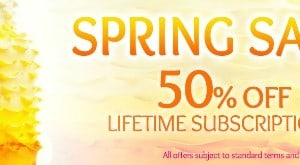 Pretty Witty Spring Sale
