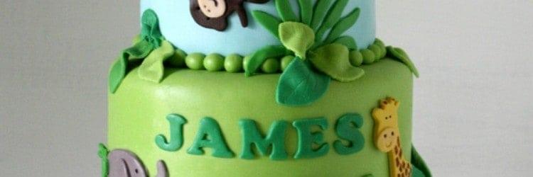 Jungle 1st Birthday Cake Smash Cake Rose Bakes