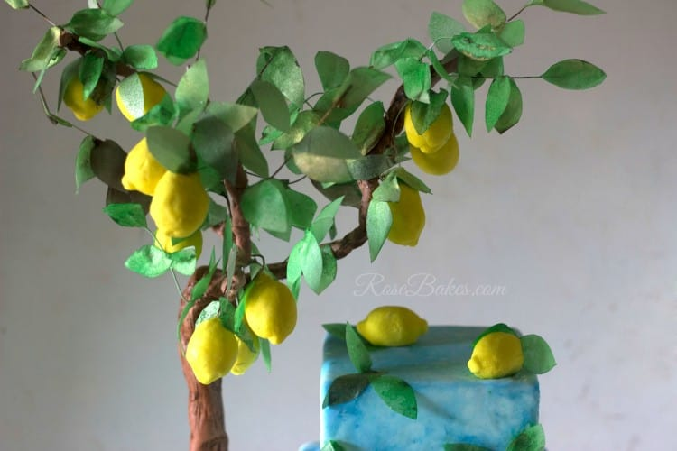 Lemon Tree Top WM
