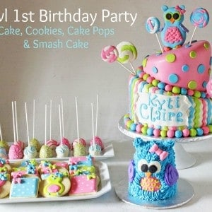 Owl Lollipops Party Cake Smash Cookies Pops