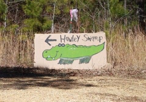 Hawley Swamp