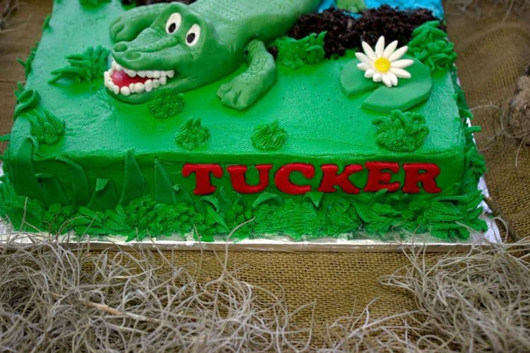 Cake Decorating Fondant Grass : A Swamp Party: Alligator Cake & Grass Cupcakes - Rose Bakes