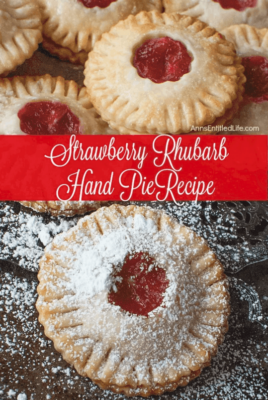 strawberry Rhubarb Hand Pie