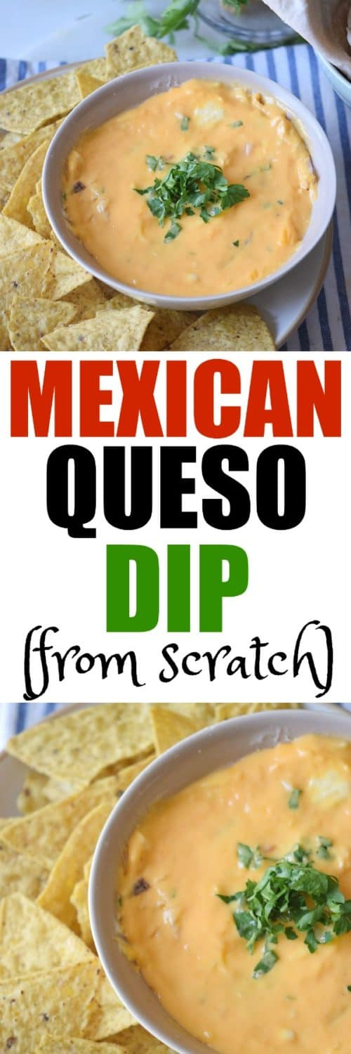 Mexican Queso Dip by RoseBakes.com
