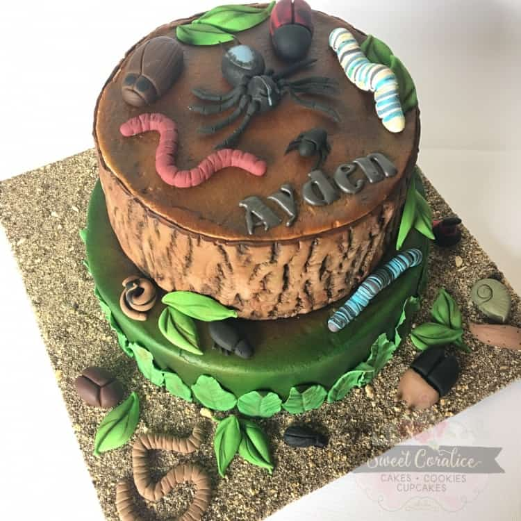 Insect & Bug Cake
