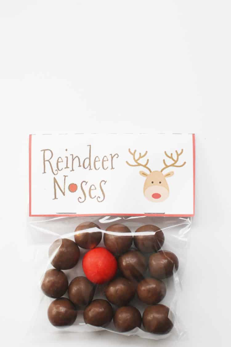 Finished Reindeer Treat Bags for Kids with Free Printable Tags