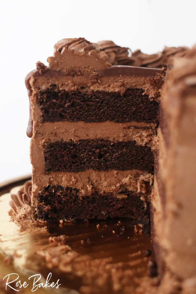 The inside view of the gluten-free, soy-free, egg-free, dairy-free chocolate cake with chocolate frosting.  There are 3 layers of cake filled with frosting.