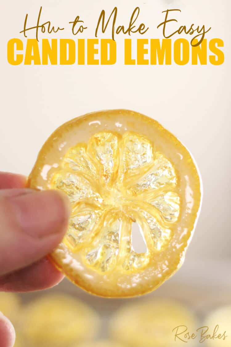 slice of candied lemon being held in front of a light