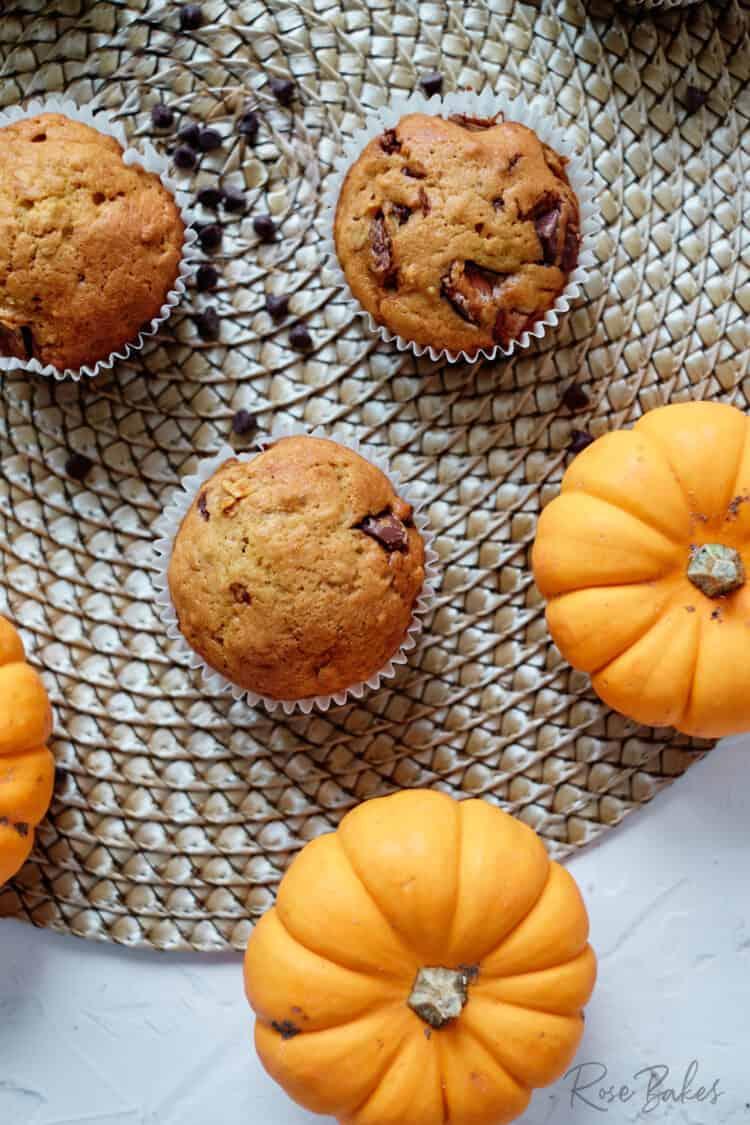 Top view of pumpkin chocolate chip muffins and mini orange pumpkins